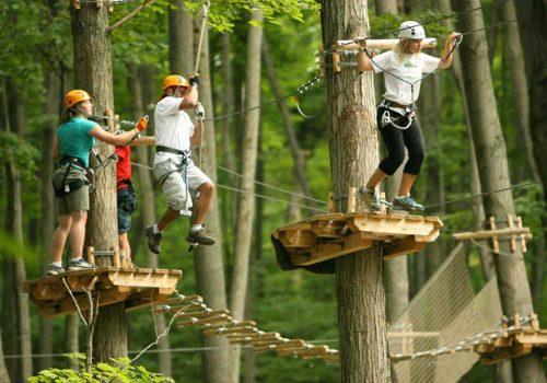 activiteit, klimbos, klimmen, wat te doen, apeldoorn, loenen, gelderland, veluwe, hotel